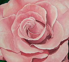 The Pink Rose by Jim Parker