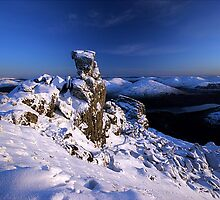 The cobbler by Stuart-Crawford