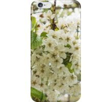 Dreamy White Blossoms - Impressions Of Spring iPhone Case/Skin