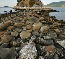 The rocky path by riosaimages