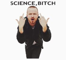 Jesse Pinkman - ''Science Bitch'' - Breaking Bad by Mollie Gunning