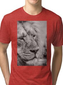 Face Of Thought Tri-blend T-Shirt