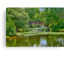 Tenny Park Bridge Canvas Print
