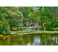 Tenny Park Bridge Photographic Print