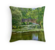 Tenny Park Bridge Throw Pillow