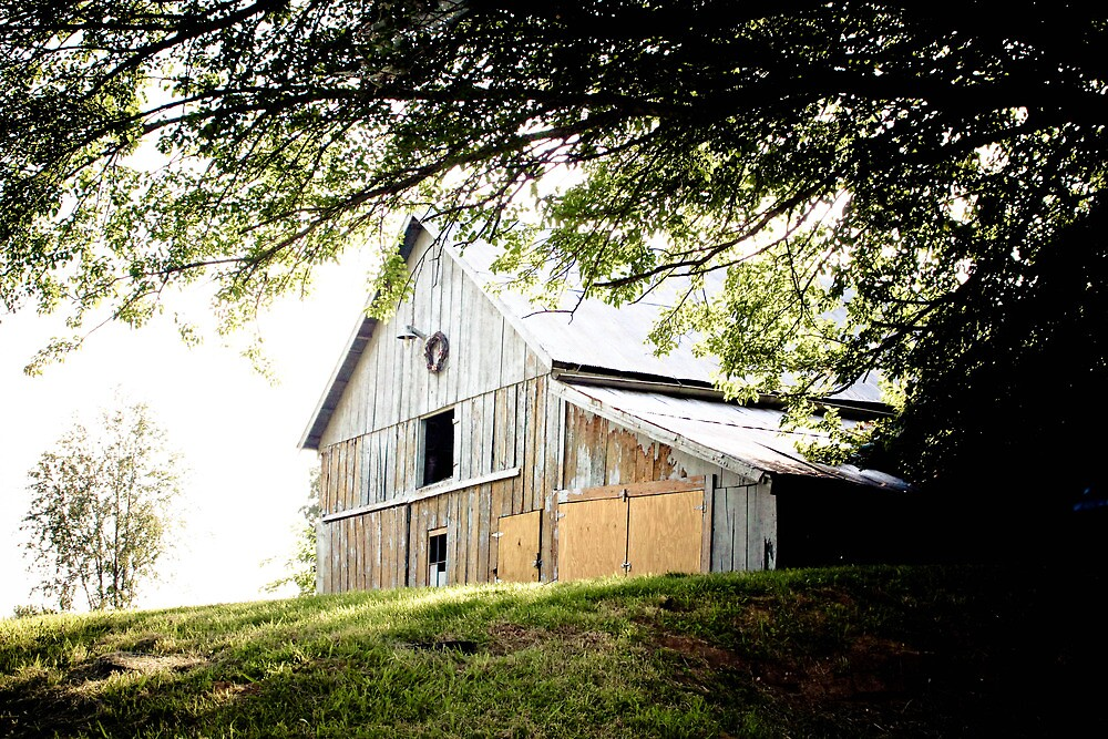 OLD BARN OUTSIDE UTICA, INDIANA by Pauline Evans
