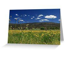 Springtime In Hat Creek Greeting Card