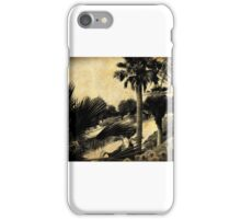 California Splendor ~~ iPhone Case/Skin