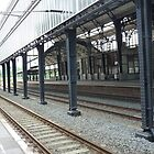 Haarlem Centraal - The Netherlands by bubblehex08