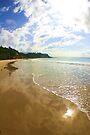 Jenny Dixon Beach by Tam  Locke
