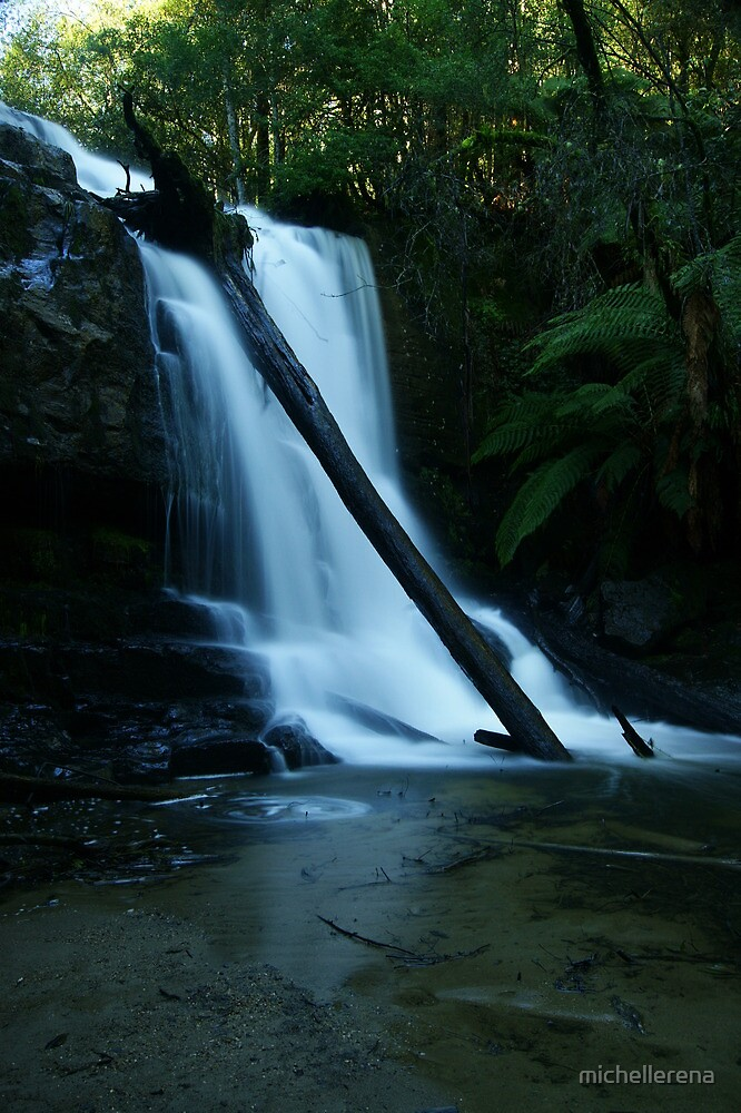Lilydale Magic... by michellerena