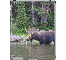 Water Feeding Moose iPad Case/Skin
