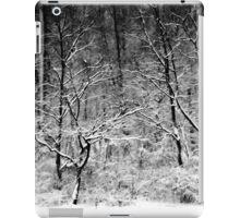 Winter Snow Trees iPad Case/Skin