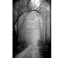 What Lies Ahead Photographic Print