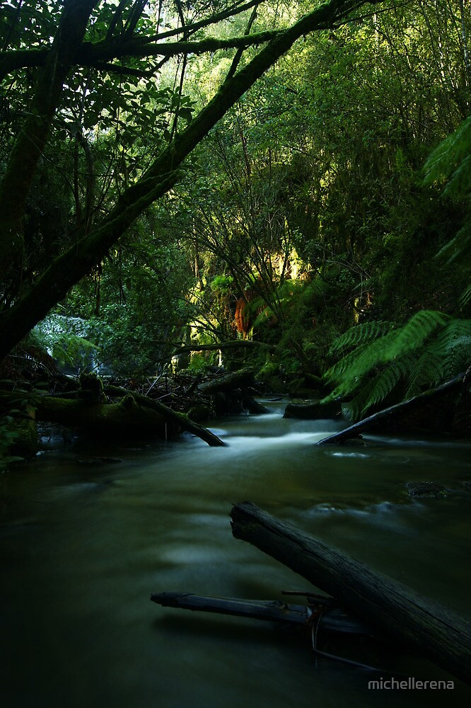 The Stream Between... by michellerena