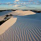 Wylie Creek Sand Dunes by Stephen  Williams