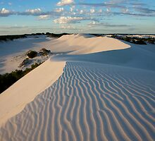 Wylie Creek Sand Dunes by Stephen  Williams