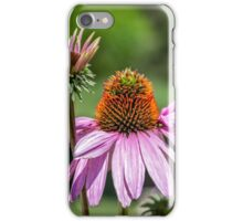 Her Royal Highness waves to her subjects iPhone Case/Skin