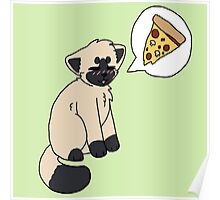 Siamese pizzacat Poster