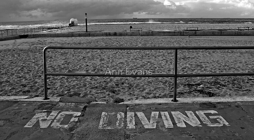 No Diving by Ann Evans