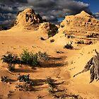 Life In The Desert by Stephen Ruane