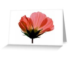 A Hue of Red Greeting Card