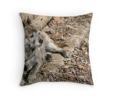 Brindle Baby Throw Pillow