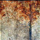 Autumn waits...... by Kathie Nichols