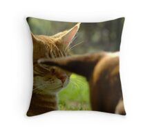 """""""He'll pay for this!"""" Throw Pillow"""