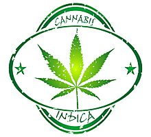 Cannabis stamp Photographic Print