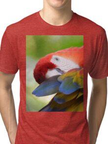 Arara Tri-blend T-Shirt