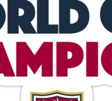 World Cup Champions USA Women's Soccer Team Light Sticker