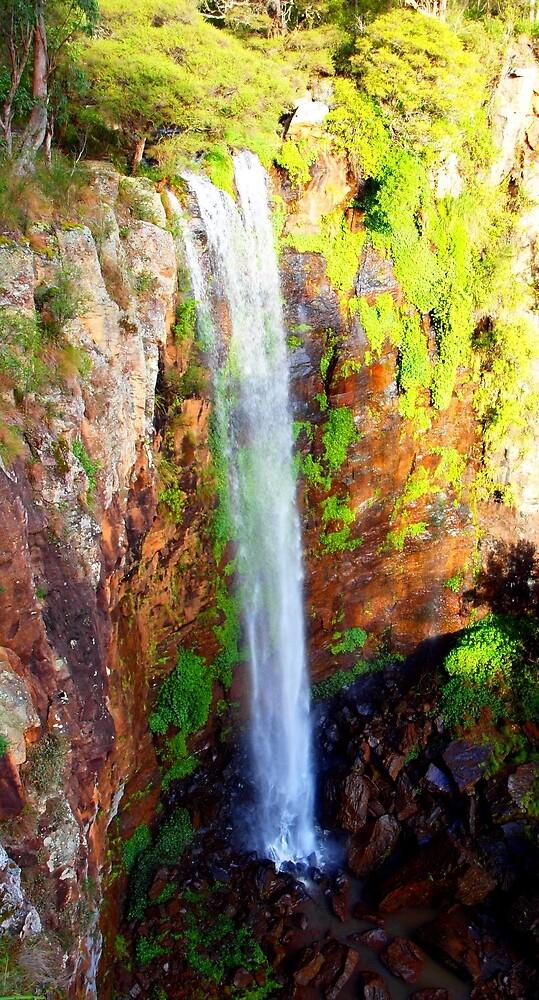Queen Mary Falls by Airwalker