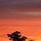 Carramar Sunset by 2naughty