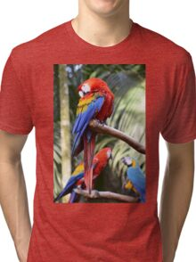 Araras Tri-blend T-Shirt