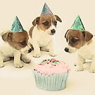 Vintage Puppy Birthday Card by micklyn
