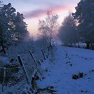 Sunrise in Speyside by derekwallace