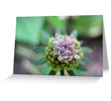 Launchpad Flower Greeting Card