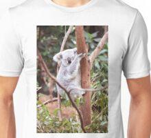 Koala, Blackbutt Reserve, NSW, Australia Unisex T-Shirt