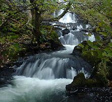 Flowing waters by Kevin McNeill