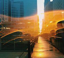 Chicago, IL // B_Landscapes by Masha Shaposhnikova