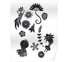 Sea Ballet in Black and White with Apologies to Ernst Haeckel Poster