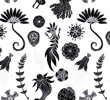 Sea Ballet in Black and White with Apologies to Ernst Haeckel by SusanSanford