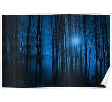 IN THE WOODS AT NIGHT Poster