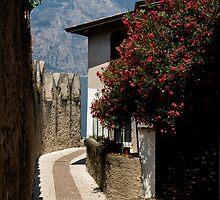Lake Garda - Malcesine Street by imagic