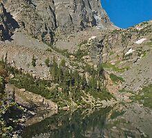 Emerald Lake Reflection of Hallet Peak by Luann wilslef