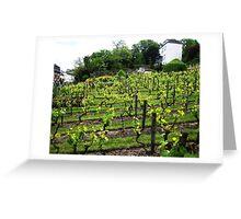 Montmartre Vineyard Greeting Card