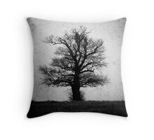 the old man of geldeston Throw Pillow