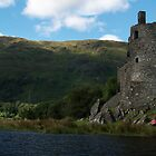 Kilchurn Castle by WatscapePhoto