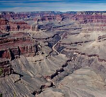 South Rim, Spring 2010 by Bob Moore